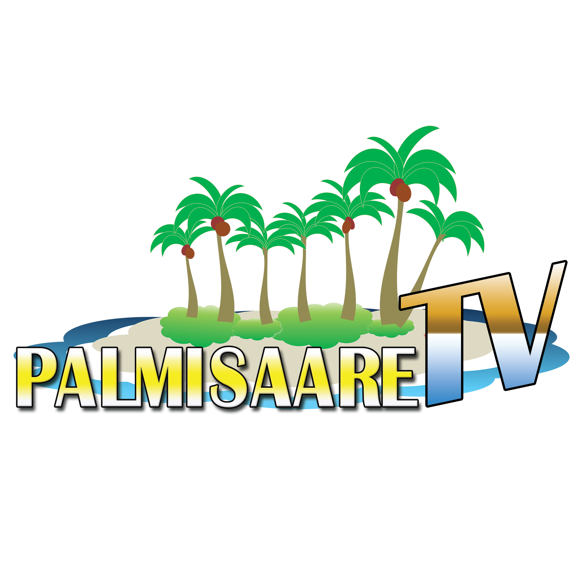Palmisaare TV